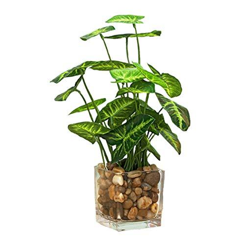 Aicvhin 人工観葉植物 光触媒 プレミアム 造花 観葉植物 簡単世話いらず フェイクグリーン ガラス鉢 (太郎葉)
