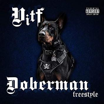 Dobermann freestyle