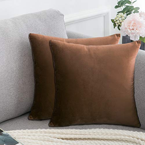 Aleeza Plain Soft Velvet Pillow Covers Super Solid Square Decorative Throw Pillow Covers Set Cushion Case for Sofa Bedroom Terrace Chair Velvet Pillow Covers 18x18 Inch – Pack of 2 (Chocolate Brown)
