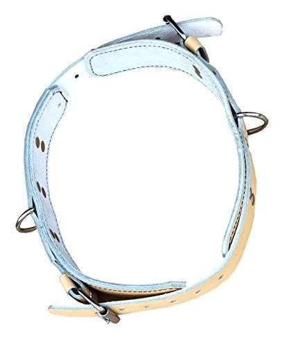 Lisaro Saltogürtel aus Leder, Saltogürtel, Sicherheitsgürtel, 5-cm bereit