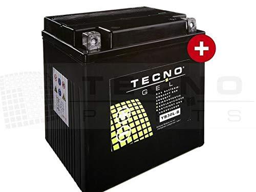 TECNO-GEL Motorrad-Batterie YB30L-B, 12V Gel-Batterie 30Ah, 168x132x176 mm inkl. Pfand