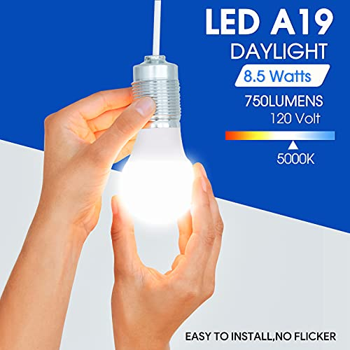 48 Pack A19 LED Bulb, 60 Watt Equivalent, Daylight 5000K, E26 Medium Base, Non-Dimmable LED Light Bulb, UL Listed