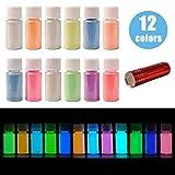 DEWEL Fluoreszierendes Pulver 12 × 20 g