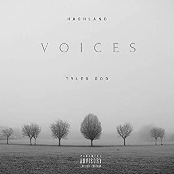 voices (feat. Tyler God)