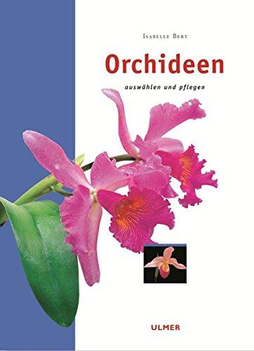 Orchideen, auswählen und pflegen