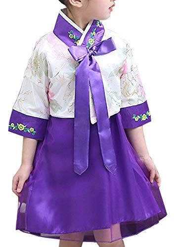 Korean Girls Hanbok Outfit wear, Traditional Korean Girl Outfit Costume. Purple