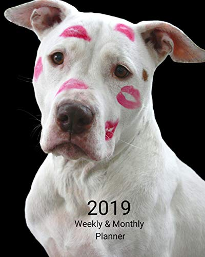 2019 Weekly and Monthly Planner: White Pitbull with Lipstick Daily Organizer -To Do -Calendar in Review/Monthly Calendar with U.S. Holidays-Notes Volume 2