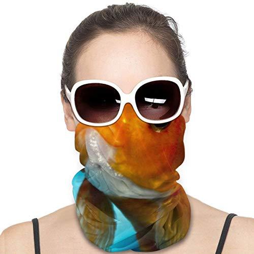 NA Variety Kopftuch Halswärmer Bandanas Outdoor Kopfbedeckung Schal Halstuch Bandanas für Damen und Herren Bandana Goldfisch – iPhone, Android & Desktop-Hintergründe