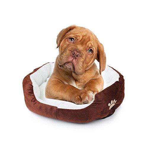 Saflyse - Cuccia per Animale Domestico, per Cane o Gatto Rosa