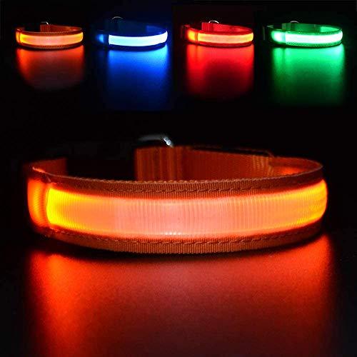 MASBRILL Wiederaufladbar LED Hund Halskette Halsband perfekt für Haustiere Hund - 100% Wasserdicht (M(50X2.5cm), Orange)