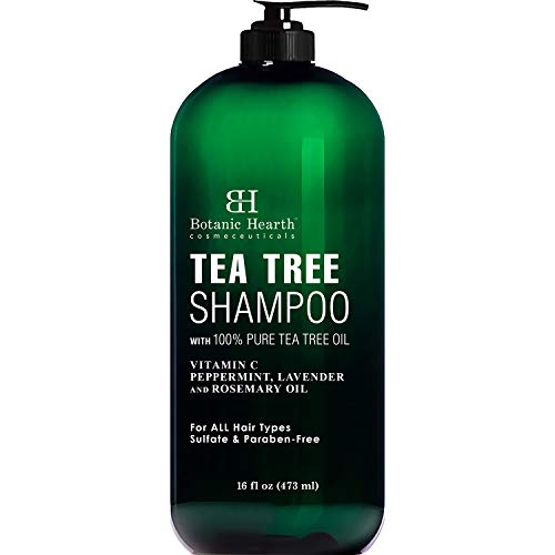 Tea Tree Shampoo by Botanic Hearth - Fights Dandruff and Dry Scalp - Sulfate Free, Paraben Free Clarifying Shampoo for Daily Use - Men and Women, Promotes Heathy Scalp - 16 fl oz