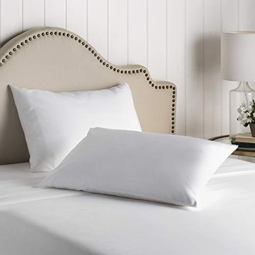 Mattress Encasement Premium Bed Bugs Pillow Protector a Set of 2 Pillow Protectors (King (21 x 36))
