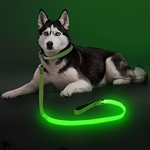 LED Dog Leash Light Up Dog Leash Micro USB Rechargeable Waterproof Nylon Webbing Glow Safety Standard Dog Leash for Dogs (Green)