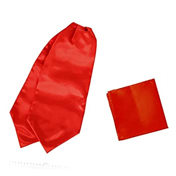 Red Ascot Tie For Men Cravat Handkerchief Satin Solid Self Casual Cravat Scarves Handkerchiefs Youth Dan Smith C.C.AQ.E.012 Red