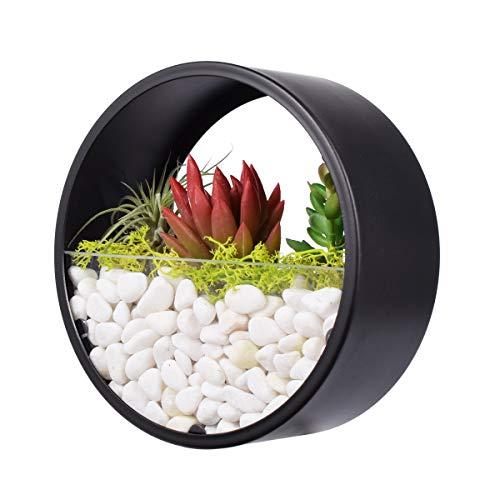 Ecosides Maceta redonda de metal para colgar en pared,jarrón de cactus,suculenta,maceta de plantas artificiales terrario de cristal circular y contenedor vertical decoración hogar o oficina