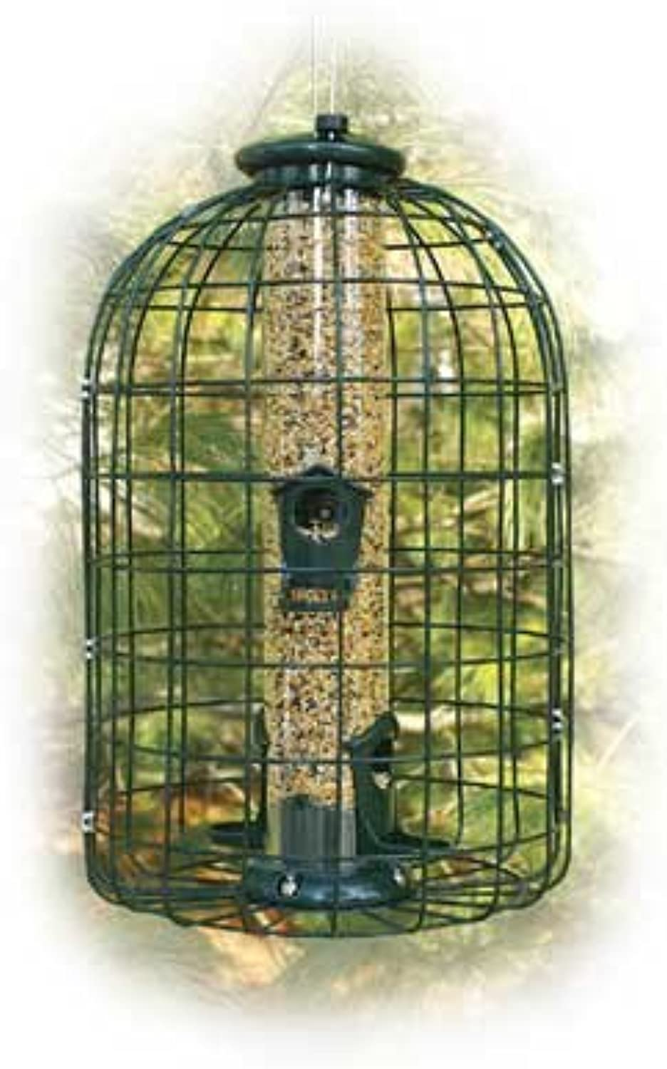 Caged Seed Tube Bird Feeder 2 lbs Capacity, Squirrel Resistant
