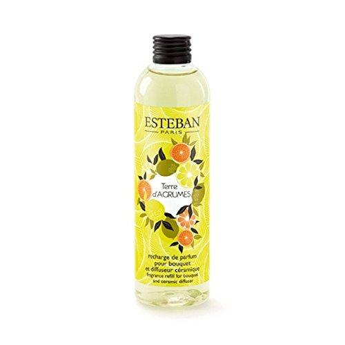 ESTEBAN TEA-005 Recharge pour Bouquet parfumé Terre d'agrumes 250ml