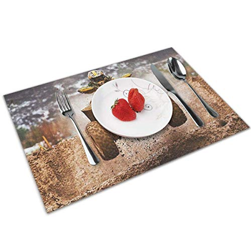 Pag Crane Dining Table Washable Placemat Non-Slip Heat Resistant Kitchen Table Mats Set of 6-Awesome ATV Quad Bike