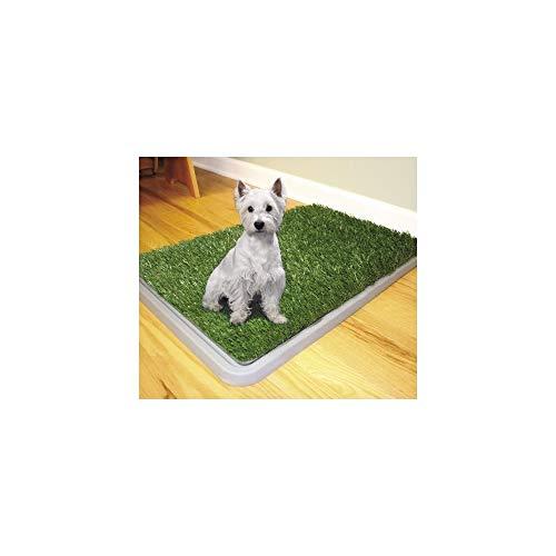 Trade Shop TraesioDOG Toilette Cani Potty Patch LETTIERA WC Lavabile 3 Strati BISOGNI Animali 43 x 68 CM