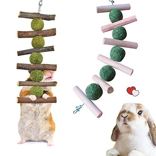 JAHEMU Juguetes para Masticar Conejos 2 Piezas Juguetes para Masticar Hámster Aperitivos Naturales de Manzana Orgánica para Mascotas, Chinchillas, Loros