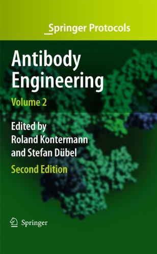 Antibody Engineering Volume 2 (Springer Protocols Handbooks) (English Edition)
