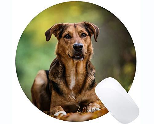 Yanteng Cojín de ratón Redondo del Juego del Caucho Natural Impreso con el Perro de Animal doméstico - Bordes cosidos
