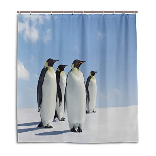 CPYang Duschvorhänge Tier-Pinguine Antarktis Wasserdichter Schimmelresistent Badevorhang Badezimmer Home Decor 168 x 182 cm mit 12 Haken