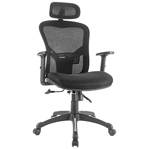 RYDESIGN Ergonomic Office Chair with Headrest, Adjustable Arms and Lumbar Support, High-Back Elastic Mesh Chair, Comfortable Executive Office Task Chair for Working and Resting
