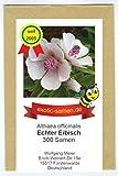 Echter Eibisch - Althaea officinalis – mehrjährige, frostharte Zierpflanze – Gewürz- und Arzneipflanze – Halva – 300 Samen