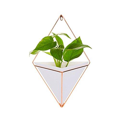 chinejaper Bloempot, wand-hangende plantenhouder, houder voor bloempotten, cactus, wanddecoratie