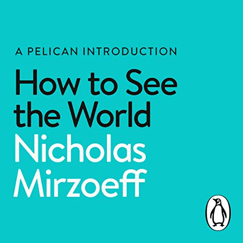 How to See the World audiobook cover art