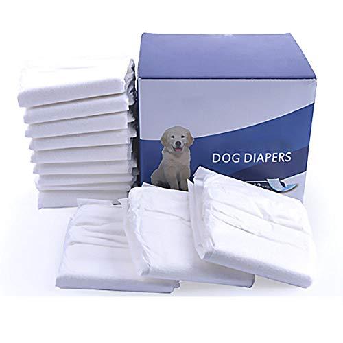 HUILI Wegwerp Huisdier Luiers voor Mannelijke Honden - Super Absorberende Zachte Mannelijke Hond Wraps met Deodorizing Huisdier Hond Papier Luiers voor Honden en Katten Urine-incontinentie