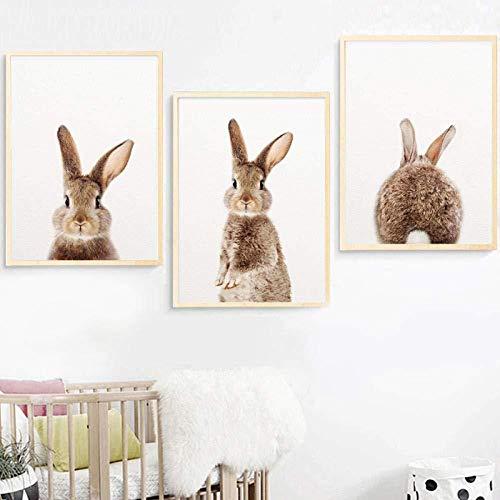 Desconocido Arte de la Pared Pintura en Lienzo Conejo Animal Nórdico Carteles e Impresiones Conejito Vivero Cuadros de Pared para Sala de Estar Habitación para niños 40x60cmx3 Sin Marco