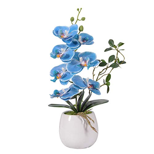 VIVILINEN Decorazione Decorativa Phalaenopsis Fiori Artificiali Sistemazione Mini Orchidea Piante Bonsai Decorazione per la casa in Vaso di Ceramica (Media, Blu)