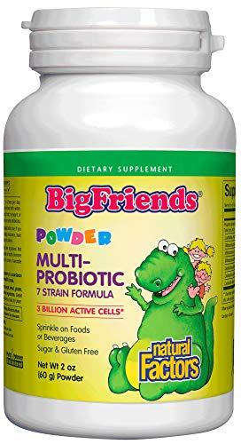 Big Friends Multi-Probiotic Powder by Natural Factors, Children
