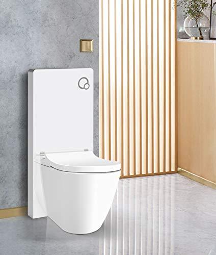 Weißglas Sanitärmodul für Stand-WC inkl. Betätigungsplatte