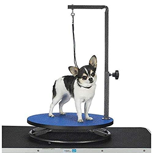 Master Equipment Pet Grooming Table
