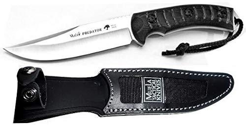 Muela Cuchillo PREDATOR-14W hoja de acero MoVa de 12,5 cm y empuñadura de micarta gris biselada para Caza, Pesca, Supervivencia y Bushcraft Realizado en Ciudad Real + Portabotellas de regalo