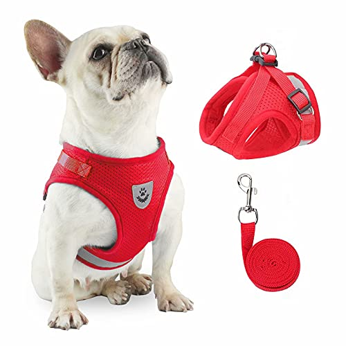 Dog Harness Set with Leash, No Pull Pet Vest Harness for Small-Medium Dogs/ Cat Walking Soft Mesh and Reflective Strap Comfort