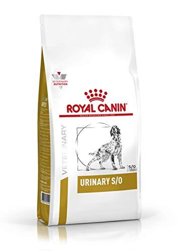 RoyalCanin Urinary S/O 2 kg   Pienso Renal para Perros Adultos de Razas Pequeñas, Medianas y Grandes con Trastornos Urinarios   Comida para Disolver Todos los Tipos de Cálculos de Fosfato Inor