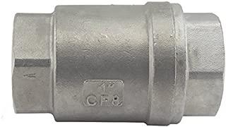 Duda Energy VCV-WOG1000-F100 Vertical Check Valve, 304 Stainless Steel, 1