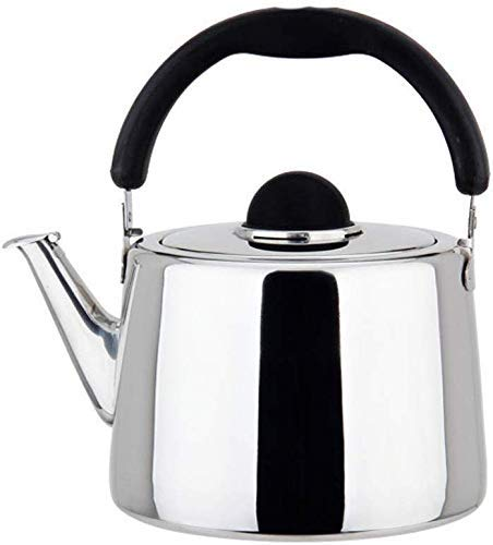 Hoge kwaliteit RVS Fluitketel for inductie kookplaat, 304 RVS gasbrander High Capacity Household Gas Cooker Kettle Kettle (Color : Silver, Size : 6L)