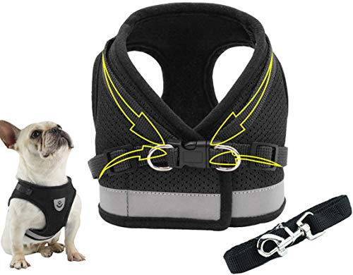 No Pull Dog Harness and Leash Set Dog Collar Adjustable Reflective Step in Dog Vest Harness for Walking Training Black S