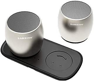 Sardine Metal Subwoofer TWS System Bluetooth Speakers Mini Portable Loudspeaker, Silvery