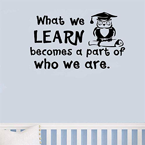 pegatinas de pared star wars Lo que aprendemos se convierte en parte de lo que somos Citas Owl Doctor para aula Guardería Sala de niños