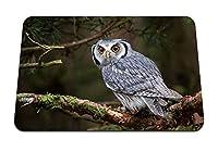 22cmx18cm マウスパッド (白い顔をしたシャベルフクロウ鳥の目捕食者) パターンカスタムの マウスパッド
