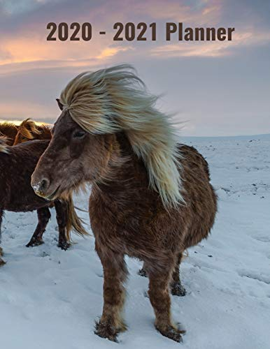 2020-2021 Planner: With A Monthly Calendar To Write On, Icelandic Horses