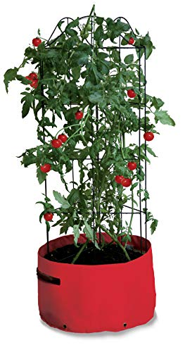 Haxnicks Planter090101 Tomato Climbing Patio Planter, Brown, 35 x 35 x 110 cm