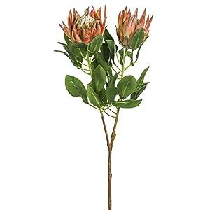 SilksAreForever 34″ Artificial King Protea Flower Stem -Orange (Pack of 6)