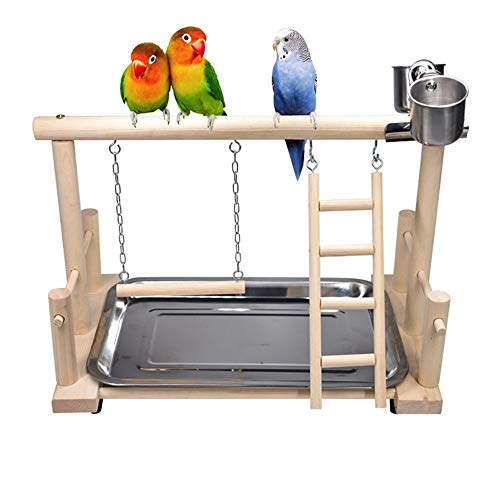 CoRxg kleine en middelgrote parrot Solido hout Peony Xuanfeng kleine doom parrot Swing opstapladder Pepper hout wandelstok Shelf Perch Gym